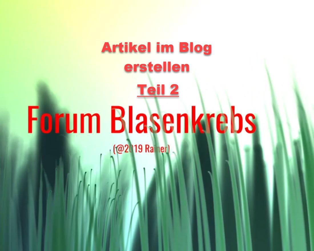 Der Blog Teil 2