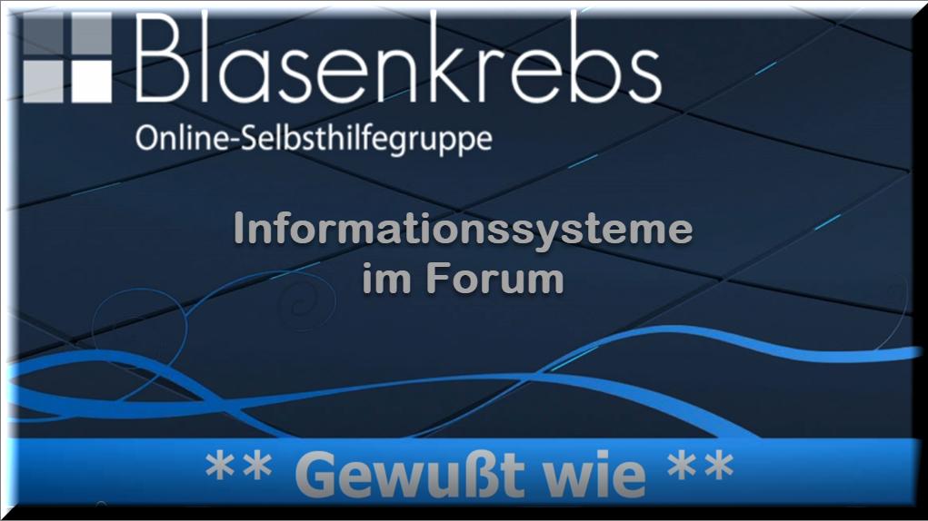Informationssysteme im Forum